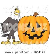Vector Illustration of a Cartoon Bald Eagle Mascot with a Halloween Pumpkin by Toons4Biz