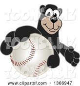 Vector Illustration of a Cartoon Black Bear School Mascot Grabbing a Baseball by Toons4Biz