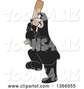 Vector Illustration of a Cartoon Black Bear School Mascot Swinging a Baseball Bat by Toons4Biz