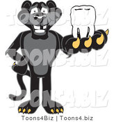 Vector Illustration of a Cartoon Black Jaguar Mascot Holding a Tooth by Toons4Biz