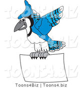 Vector Illustration of a Cartoon Blue Jay Mascot Flying a Blank Sign by Toons4Biz