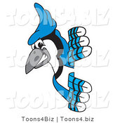 Vector Illustration of a Cartoon Blue Jay Mascot Looking Around a Sign by Toons4Biz
