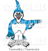 Vector Illustration of a Cartoon Blue Jay Mascot Pointing Right by Toons4Biz
