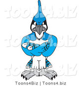 Vector Illustration of a Cartoon Blue Jay Mascot with Crossed Arms by Toons4Biz