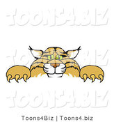 Vector Illustration of a Cartoon Bobcat Mascot Looking over a Sign by Toons4Biz