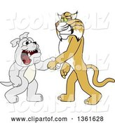 Vector Illustration of a Cartoon Bobcat Mascot Shaking Hands with a Bulldog, Symbolizing Acceptance and Introduction by Toons4Biz