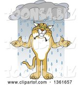 Vector Illustration of a Cartoon Bobcat Mascot Shrugging in the Rain, Symbolizing Acceptance by Toons4Biz