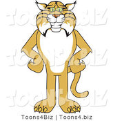 Vector Illustration of a Cartoon Bobcat Mascot Standing with His Hands on His Hips by Toons4Biz