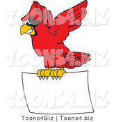 Vector Illustration of a Cartoon Cardinal Mascot Flying a Blank Sign by Toons4Biz