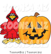Vector Illustration of a Cartoon Cardinal Mascot with a Halloween Pumpkin by Toons4Biz