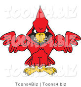 Vector Illustration of a Cartoon Cardinal Mascot with Strong Arms by Toons4Biz