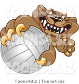 Vector Illustration of a Cartoon Cougar Mascot Character Grabbing a Volleyball by Toons4Biz