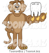 Vector Illustration of a Cartoon Cougar Mascot Character Holding a Tooth by Toons4Biz