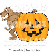 Vector Illustration of a Cartoon Cougar Mascot Character with a Pumpkin by Toons4Biz