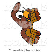 Vector Illustration of a Cartoon Falcon Mascot Character Peeking by Toons4Biz