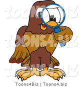 Vector Illustration of a Cartoon Falcon Mascot Character Using a Magnifying Glass by Toons4Biz