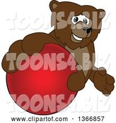 Vector Illustration of a Cartoon Grizzly Bear School Mascot Grabbing a Ball by Toons4Biz