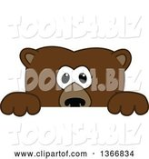 Vector Illustration of a Cartoon Grizzly Bear School Mascot Looking over a Sign by Toons4Biz