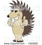 Vector Illustration of a Cartoon Hedgehog Mascot Holding Two Thumbs up by Toons4Biz