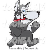 Vector Illustration of a Cartoon Husky Mascot Running by Toons4Biz