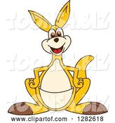 Vector Illustration of a Cartoon Kangaroo Mascot by Toons4Biz
