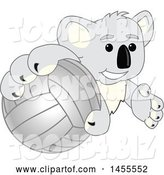 Vector Illustration of a Cartoon Koala Bear Mascot Grabbing a Volleyball by Toons4Biz