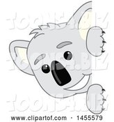 Vector Illustration of a Cartoon Koala Bear Mascot Peeking Around a Sign by Toons4Biz