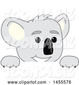 Vector Illustration of a Cartoon Koala Bear Mascot Peeking over a Sign by Toons4Biz