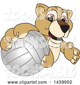 Vector Illustration of a Cartoon Lion Cub School Mascot Grabbing a Volleyball by Toons4Biz