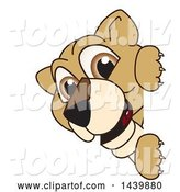 Vector Illustration of a Cartoon Lion Cub School Mascot Looking Around a Sign by Toons4Biz