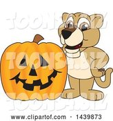 Vector Illustration of a Cartoon Lion Cub School Mascot with a Halloween Pumpkin by Toons4Biz