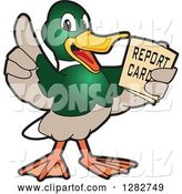 Vector Illustration of a Cartoon Mallard Duck School Mascot Holding a Report Card by Toons4Biz
