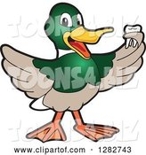 Vector Illustration of a Cartoon Mallard Duck School Mascot Holding a Tooth by Toons4Biz