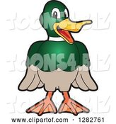 Vector Illustration of a Cartoon Mallard Duck School Mascot Smiling by Toons4Biz