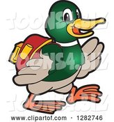Vector Illustration of a Cartoon Mallard Duck School Mascot Student Walking by Toons4Biz