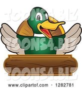 Vector Illustration of a Cartoon Mallard Duck School Mascot Welcoming over a Wooden Sign by Toons4Biz