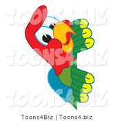 Vector Illustration of a Cartoon Parrot Mascot Peeking by Toons4Biz