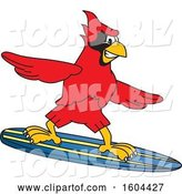 Vector Illustration of a Cartoon Red Cardinal Bird Mascot Surfing by Toons4Biz