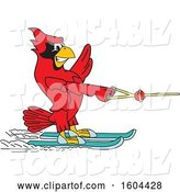 Vector Illustration of a Cartoon Red Cardinal Bird Mascot Water Skiing by Toons4Biz