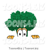 Vector Illustration of a Cartoon Scared Broccoli Mascot Peeking over a Surface by Toons4Biz