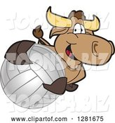 Vector Illustration of a Cartoon School Bull Mascot Holding up or Catching a Volleyball by Toons4Biz