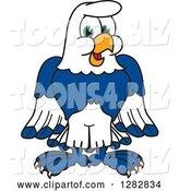 vector illustration of a cartoon seahawk mascot by toons4biz 7418