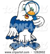 Vector Illustration of a Cartoon Seahawk Mascot Looking Through a Magnifying Glass by Toons4Biz