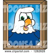 Vector Illustration of a Cartoon Seahawk Mascot Portrait by Toons4Biz