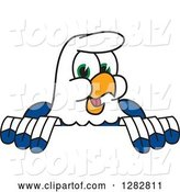 Vector Illustration of a Cartoon Seahawk Mascot Smiling over a Sign by Toons4Biz