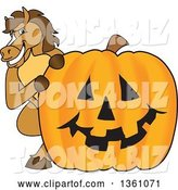 Vector Illustration of a Cartoon Stallion School Mascot Looking Around a Halloween Jackolantern Pumpkin by Toons4Biz