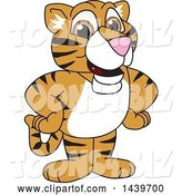 Vector Illustration of a Cartoon Tiger Cub Mascot by Toons4Biz