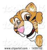 Vector Illustration of a Cartoon Tiger Cub Mascot Looking Around a Sign by Toons4Biz