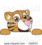 Vector Illustration of a Cartoon Tiger Cub Mascot Looking over a Sign by Toons4Biz