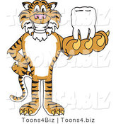 Vector Illustration of a Cartoon Tiger Mascot Holding a Tooth by Toons4Biz